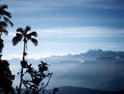 De Minca à Cerro Kennedy : entre mer et montagne